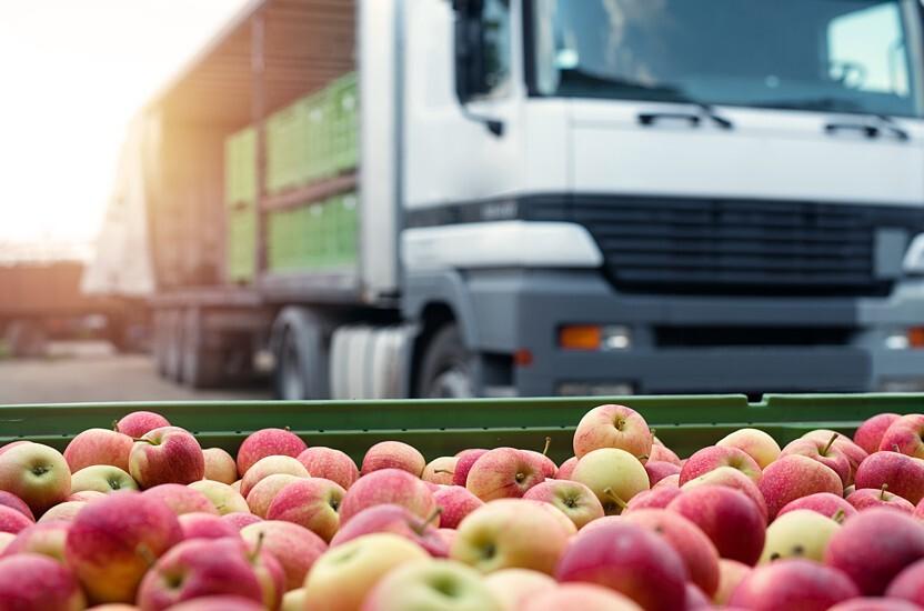 Conservez la fraîcheur de vos fruits et légumes grâce à un emballage logistique approprié