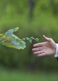 5 étapes pour construire une chaîne d'approvisionnement durable